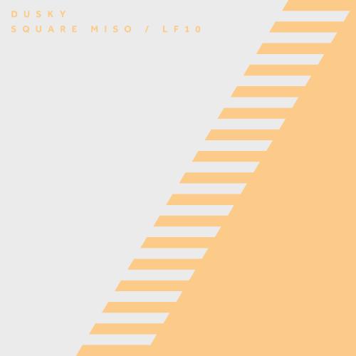 DUSKY – SQUARE MISO / LF10